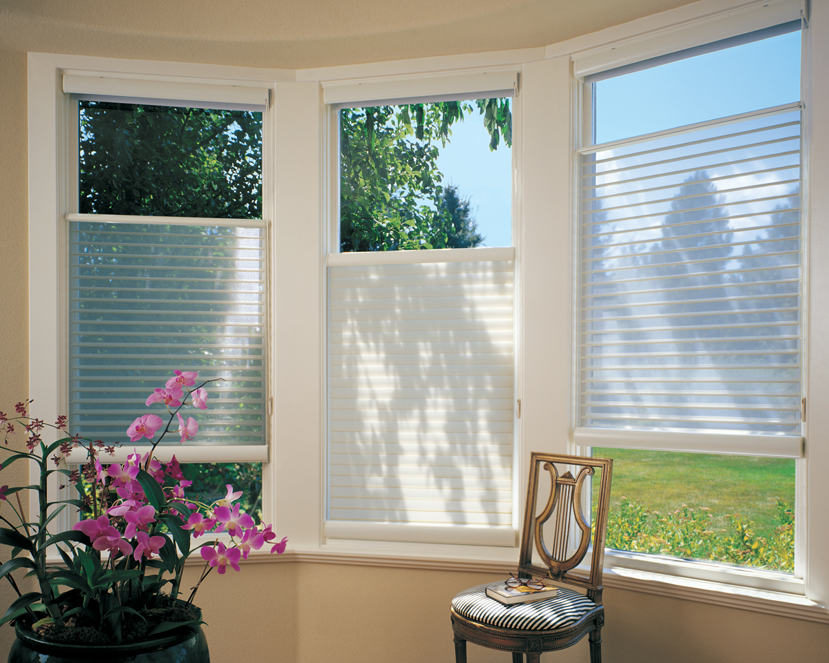 asset window douglas blinds fashons hunter